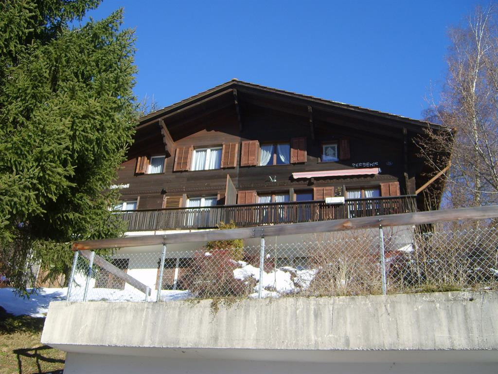Berberis - Apartment - Lenk - Exterior - Winter