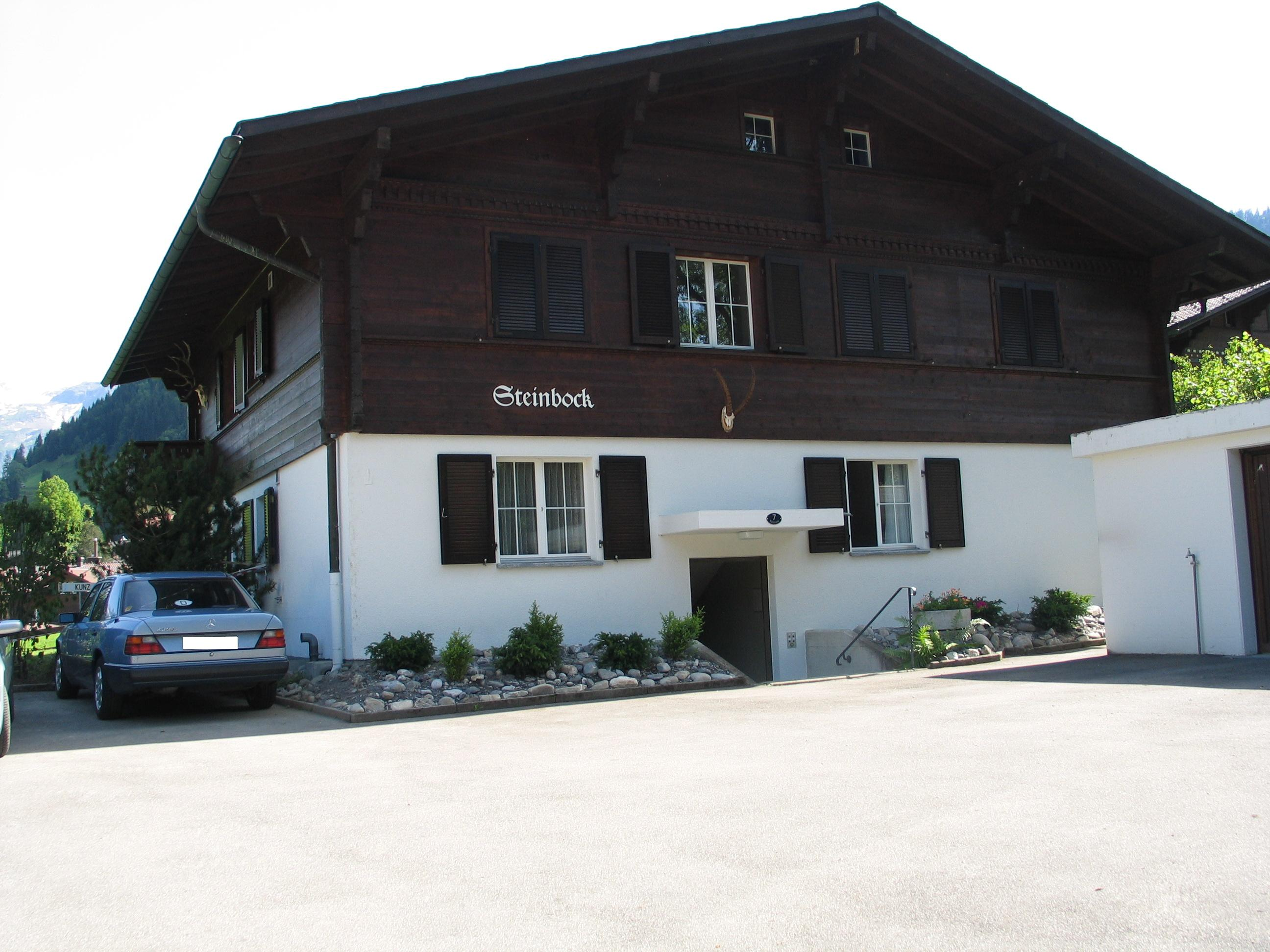 Steinbock # 3 - Apartment - Lenk - Exterior - Winter