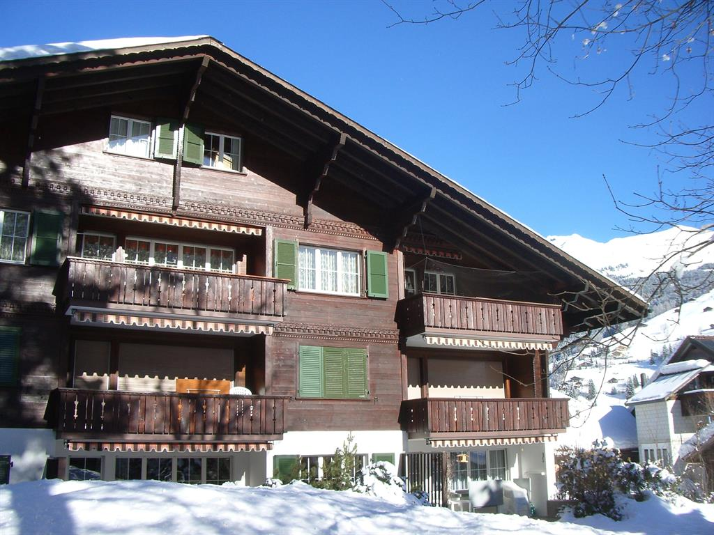 Balmehus # 3 - Apartment - Lenk - Exterior - Winter