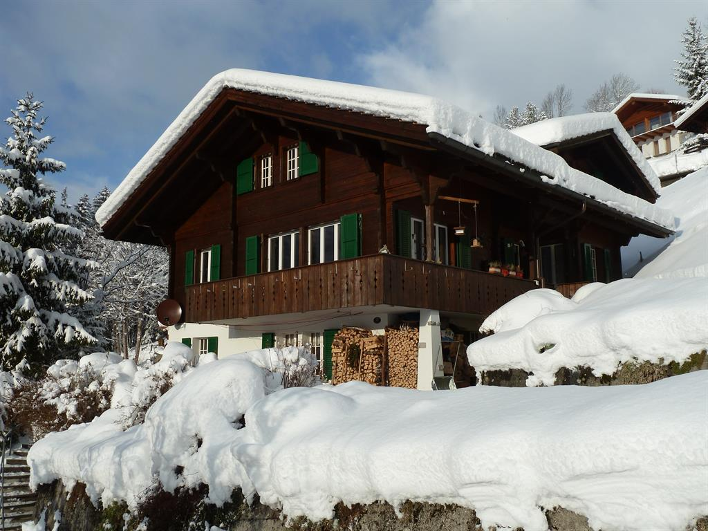 Bach - Apartment - Lenk - Exterior - Winter