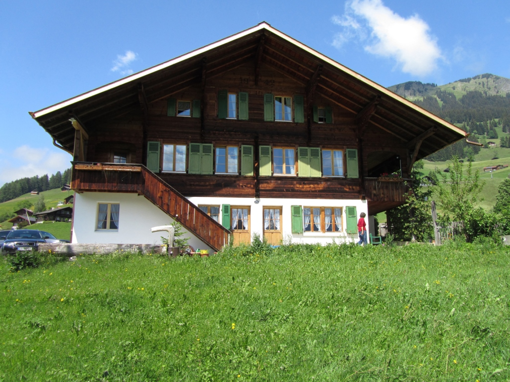 Chalet Pletschen - Apartment - Lenk - Exterior - Winter