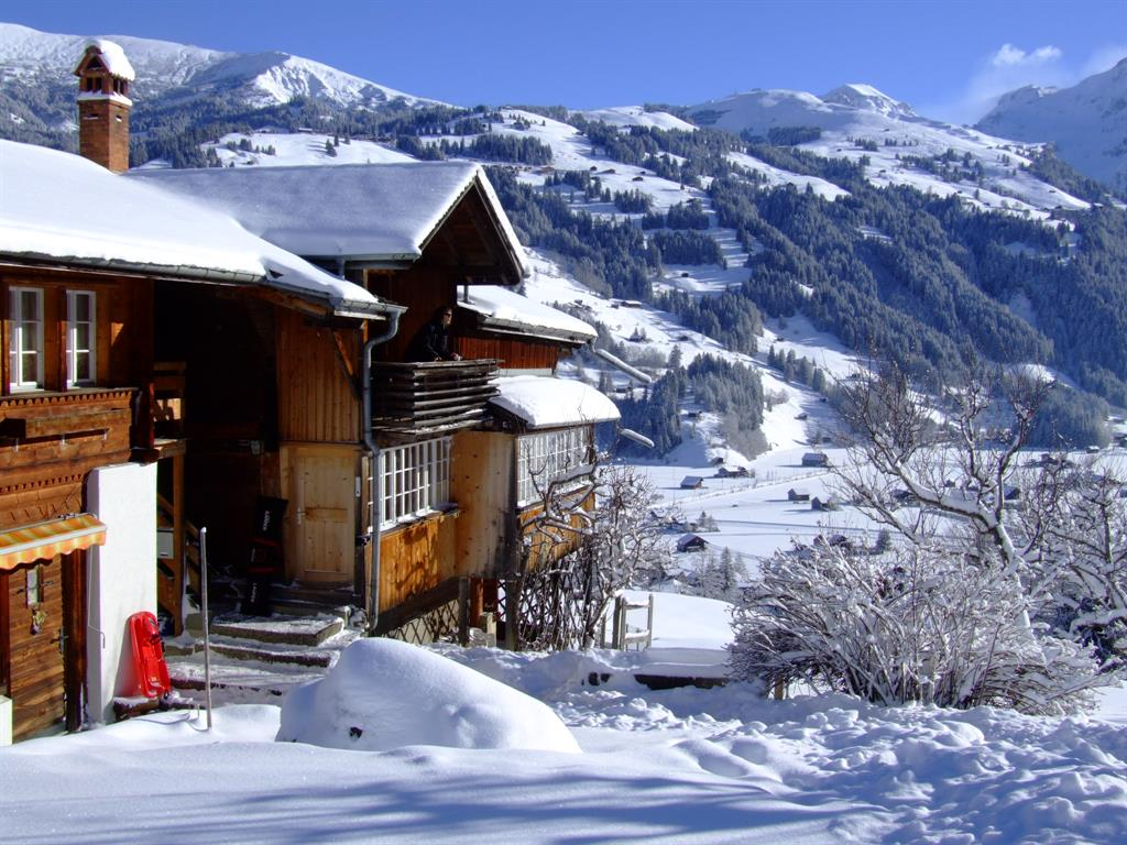 Hohliebi - Apartment - Lenk - Exterior - Winter
